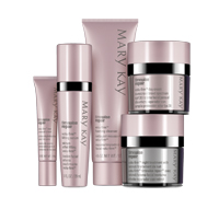 Mary Kay Consultant Christmas Sales -