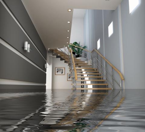 Water Damage Professionals - Basement Waterproofing Toronto