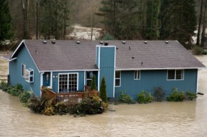 Water Damage Professionals - Basement Waterproofing