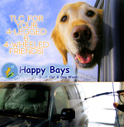 Happy Bays For Happy Dogs And Sparkling Cars - E80faa8592b3 400x410