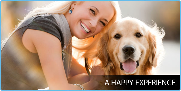 Happy Bays For Happy Dogs And Sparkling Cars - Calgary Dog Wash